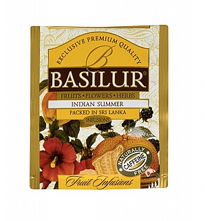 BASILUR Horeca Fruit Indian Summer 1 sáček